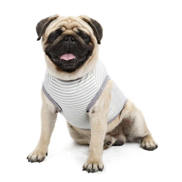 Striped Pug Tank Top
