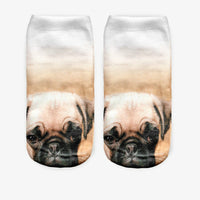 Worried Pug Socks