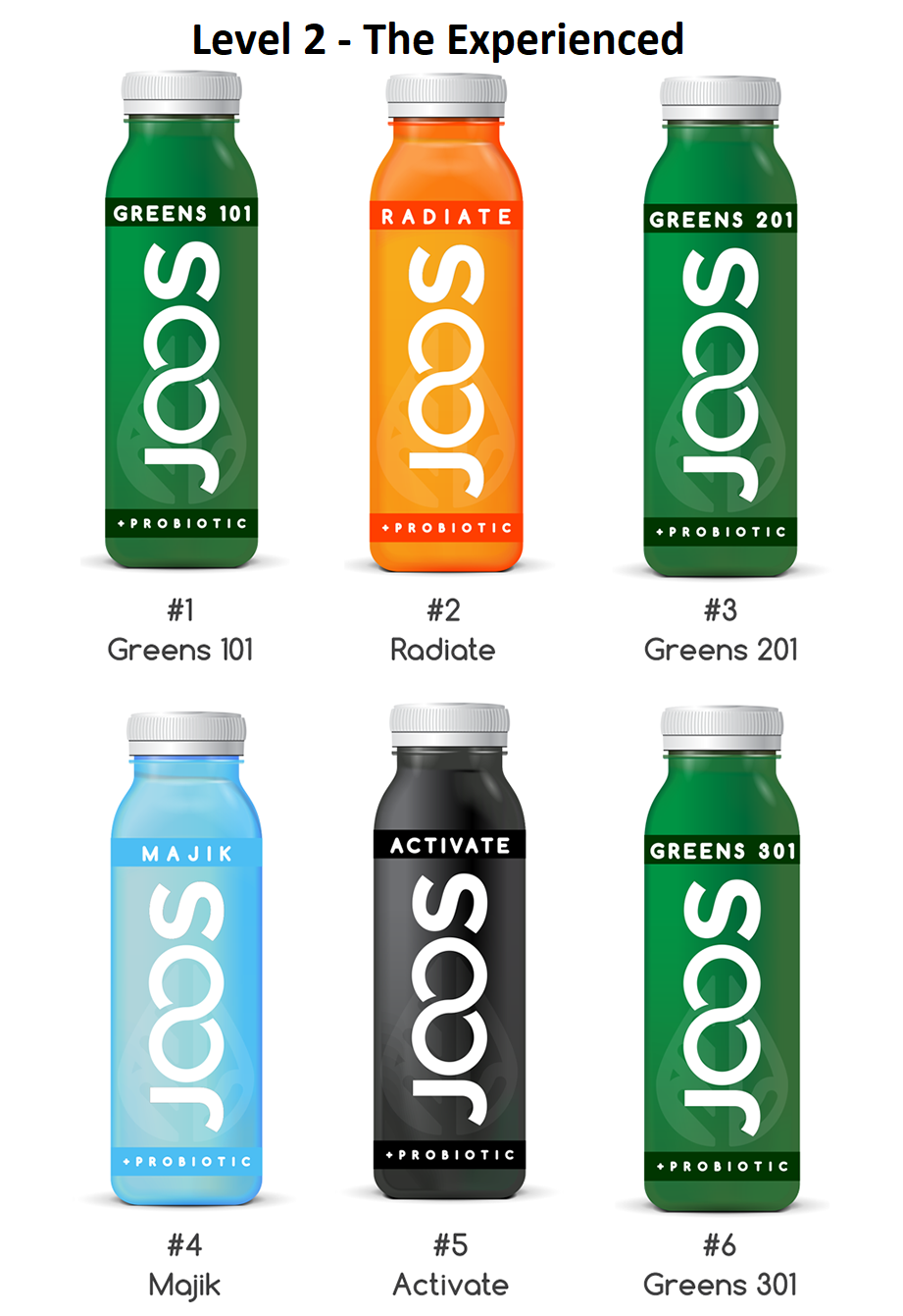 JOOS - Cold Pressed Juice - Cleanse Level 2 - The Experienced
