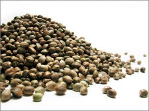 Mountain Path Canadian Hemp Nut (Shelled Hemp), Organic