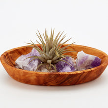 Petite mini tranquility zen garden with raw amethyst healing crystals, Tillandsia air plants, clear crystal quartz healing gemstones all nestled into a hand carved olive wood display.