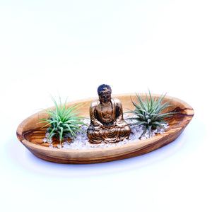 Peaceful buddha zen garden with calming clear crystal quartz, Tillandsia air plants and hand carved olive wood display.