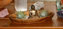 Peaceful buddha zen garden with calming clear healing crystal quartz, Tillandsia air plants and hand carved olive wood display.