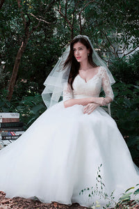 Ball-Gown V-neck Lace Wedding Dress with 1/2 Sleeves