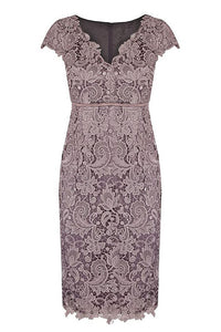 Elegant Lace V-neck Mother of the Bride Dresses