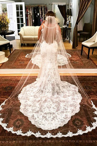 3M-Long Bridal Wedding Veil with Lace Applique(Without Pin)
