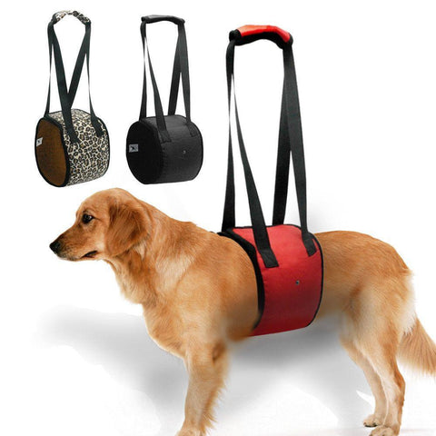 Dog Lift Support Harness with handle-DogsTailCircle