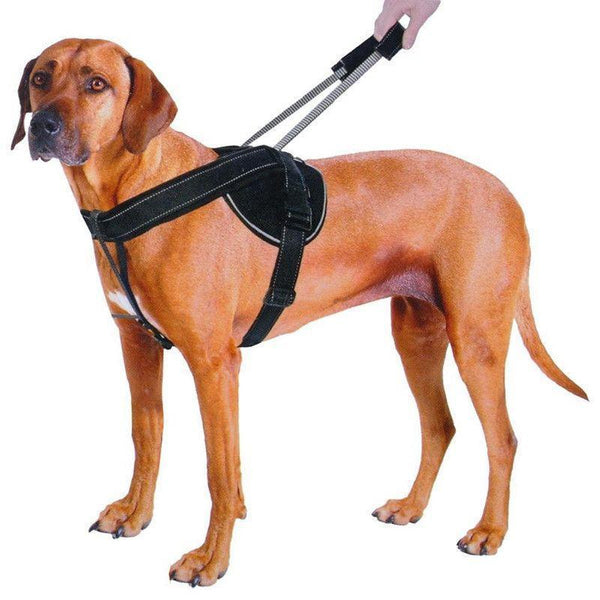 Quick Control Training Harness With Integrated Retractable Handle-DogsTailCircle