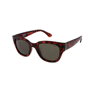 Jase New York Delano Sunglasses in Havana