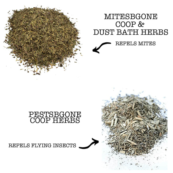 MitesBGone & PestsBGone Coop Herbs Bundle - 2 Blends In Bundle To Repel Pests