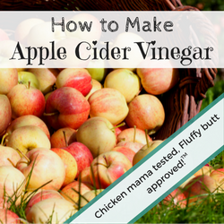 Make Homemade Apple Cider Vinegar Video