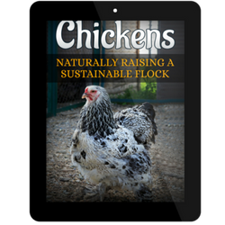 Chickens: Naturally Raising A Sustainable Flock Digital Version