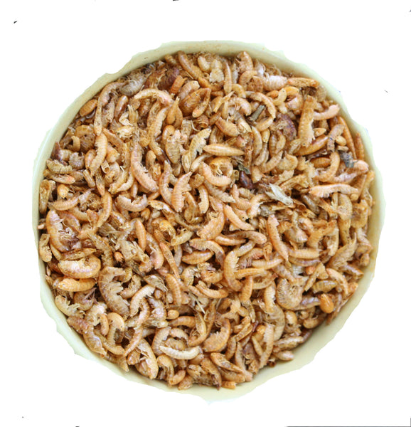 photo of dried shrimp in bowl