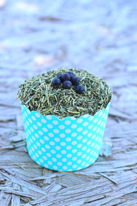 mitesbgone coop herbs with diatomaceous earth in a blue container