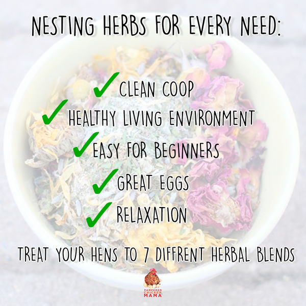 Infographic explaining benefits of Nesting Herbs for pet chickens