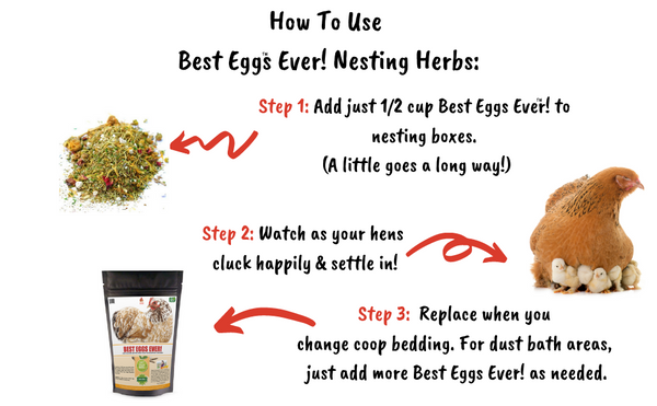 Best Eggs Ever! (TM) Nesting Herbs For Pet Chickens