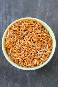 Dried Shrimp (A Treat Your Flock Will Adore!)