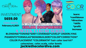 THE COLOR DIVA ACADEMY 4 week color coaching series