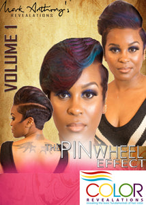 "HAIR COLOR DVD ""THE PINWHEEL EFFECT"""