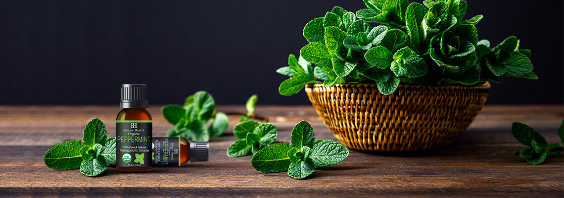 Peppermint Oil Uses: Hair and Skin