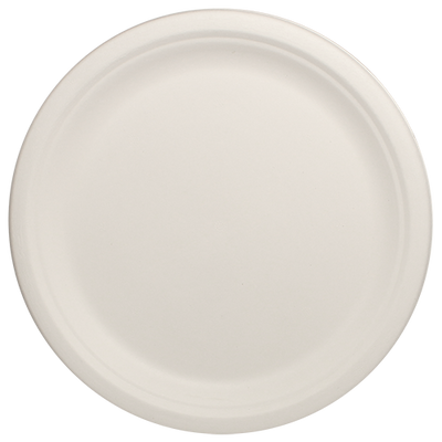 Eco-friendly 10″ Bagasse Round Plate Case