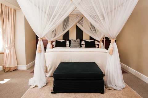 Bed Canopy trends 2021