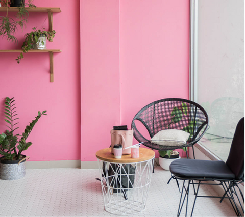 Pink Accent Wall with Furniture