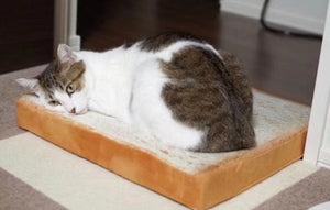 Bread Slices Pillow - for cats and for men