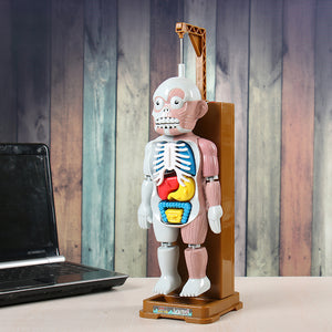 Weird Human Body Model Toy