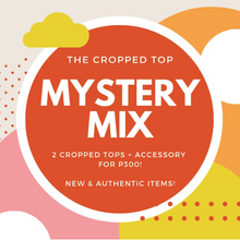 The 2 Cropped Tops + Accessory Mystery MIX