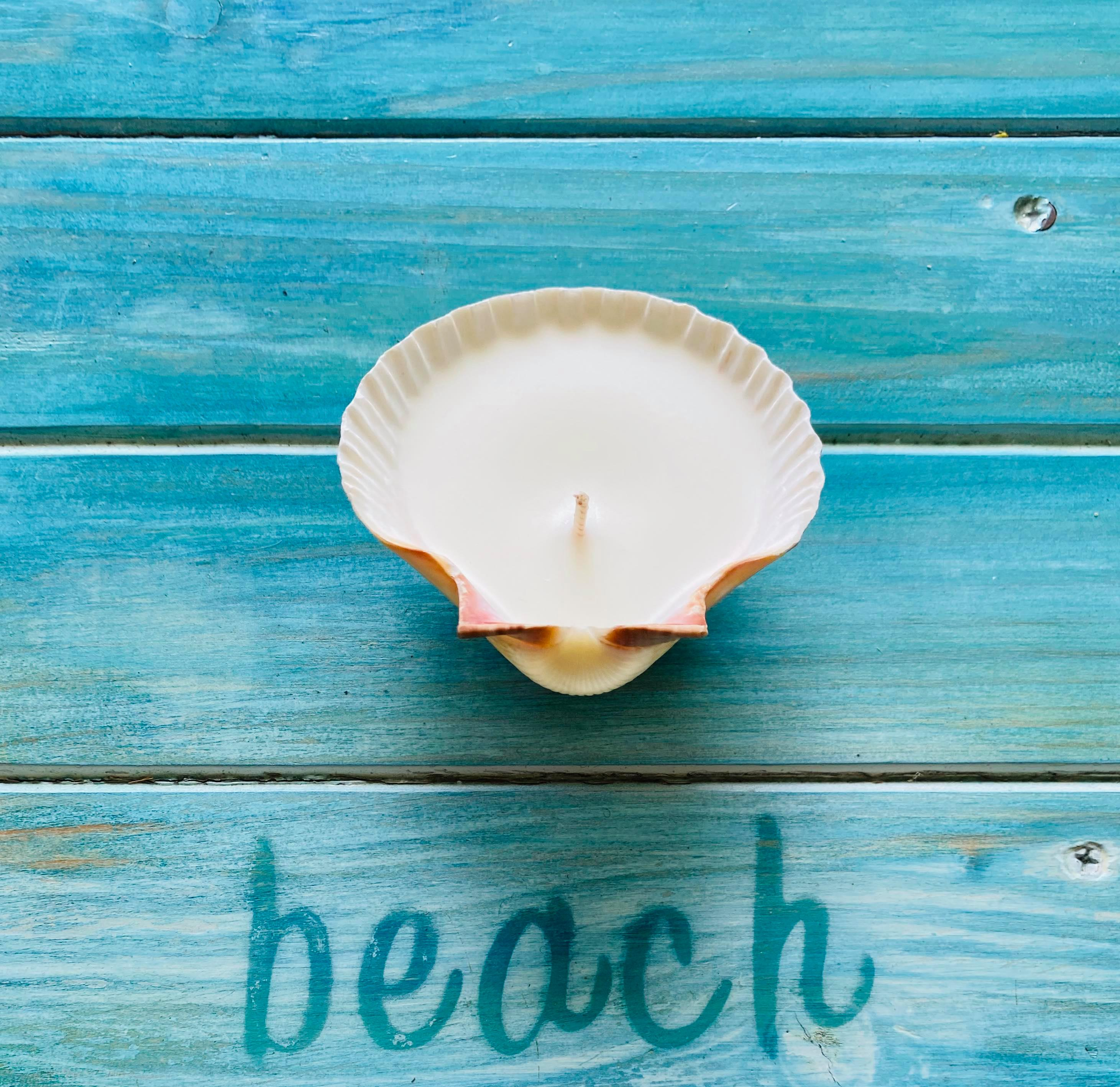 Coconut & Vanilla Scallop Shell Candle