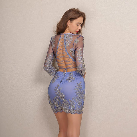 2018 New Long Sleeve Embroidery Lace Bodycon Dress Elegant Deep V Neck - BOUTIQUEKOM