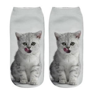 White Kitten Animal Socks