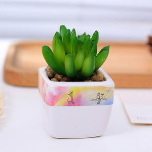 do it yourself diy decoration cactus plant