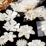 Create a Flower Kit With Ornate MDF Frames and Plaques - Creates 280 Flowers