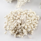 10 Bunches of White Flower Stamens