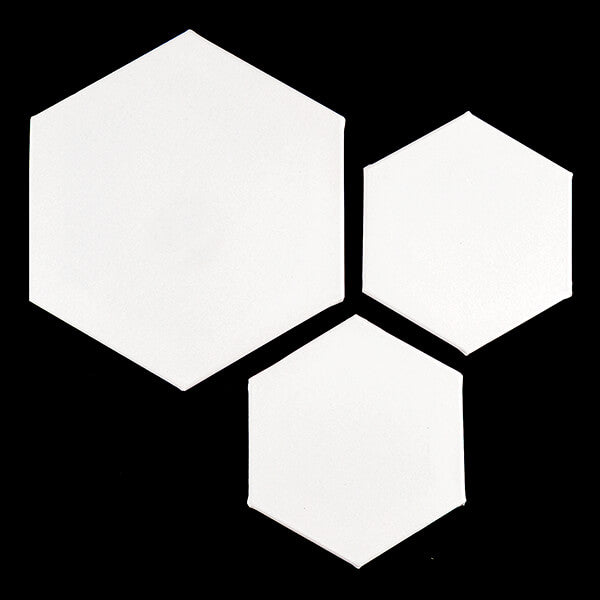 3 x Hexagon Canvas