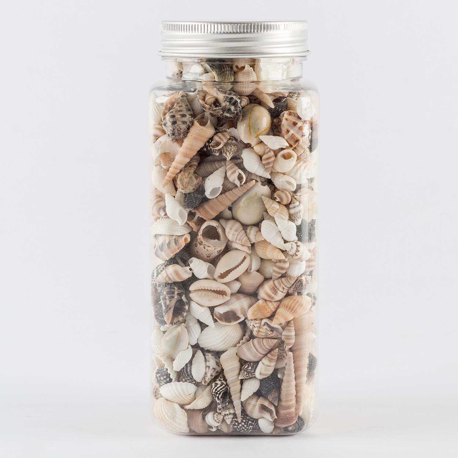 Craft Buddy 400g of Mixed Shells