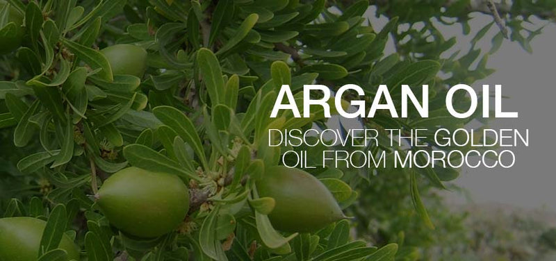 Argan Oil for hair: Discover the Golden Oil from Morocco