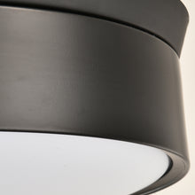 Modern Ceiling Fan With Lighting - Details