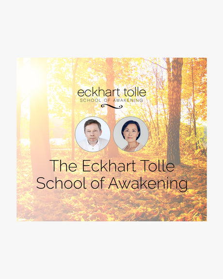 The Eckhart Tolle School of Awakening Scholarship Plan - (One payment of $295 today, and two payments of $295 over two months)