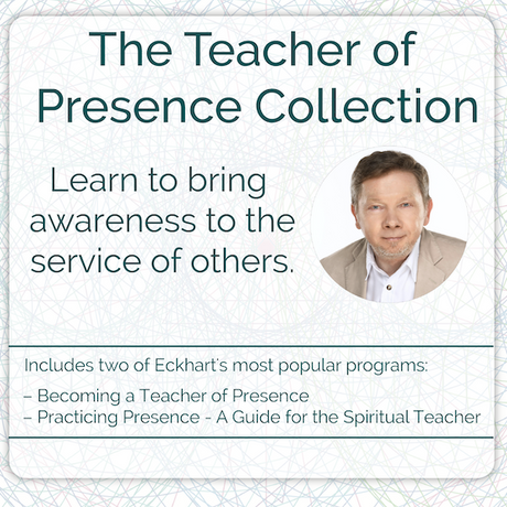 The Teacher of Presence Collection