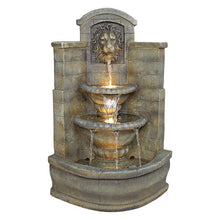 SAINT REMY LION CORNER FOUNTAIN