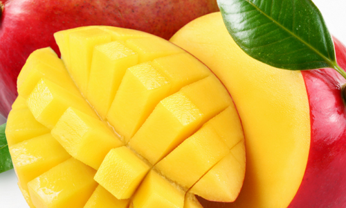 Which African Mango product is best? – A simple guide to African Mango