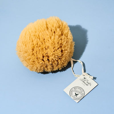 Sea Sponge - Large Body - Care - Eco - German - Product