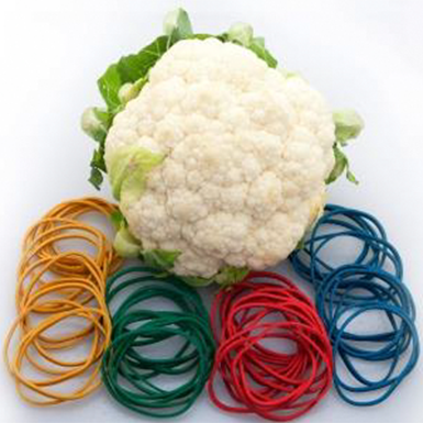 Produce Rubber Bands