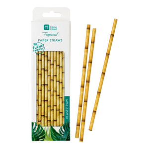 Fiesta Bamboo Paper Straws - Talking Tables US Public