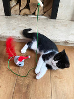 Botanical Christmas Cat Toy
