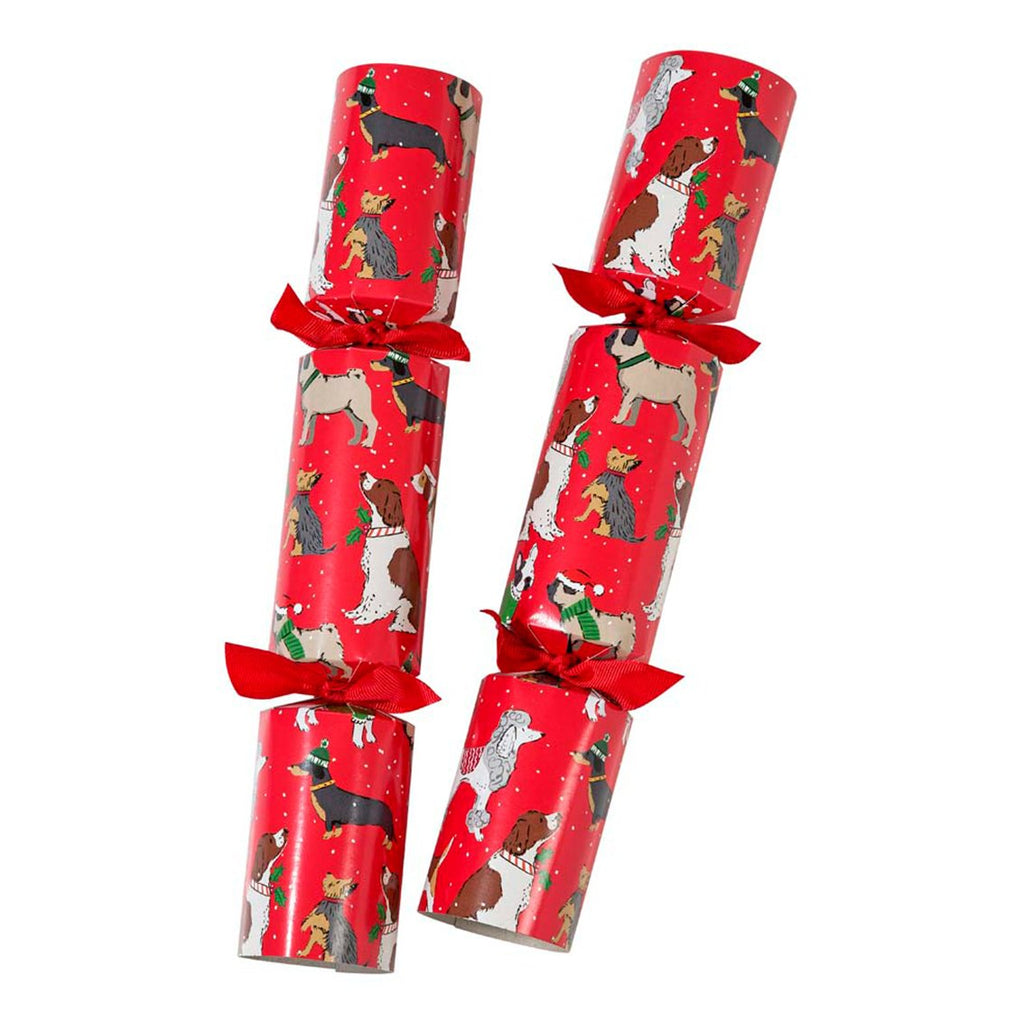 Botanical Christmas 12 inch Bingo Crackers - Talking Tables EU Public