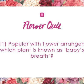 Printable - Flowers Quiz - Talking Tables EU Public